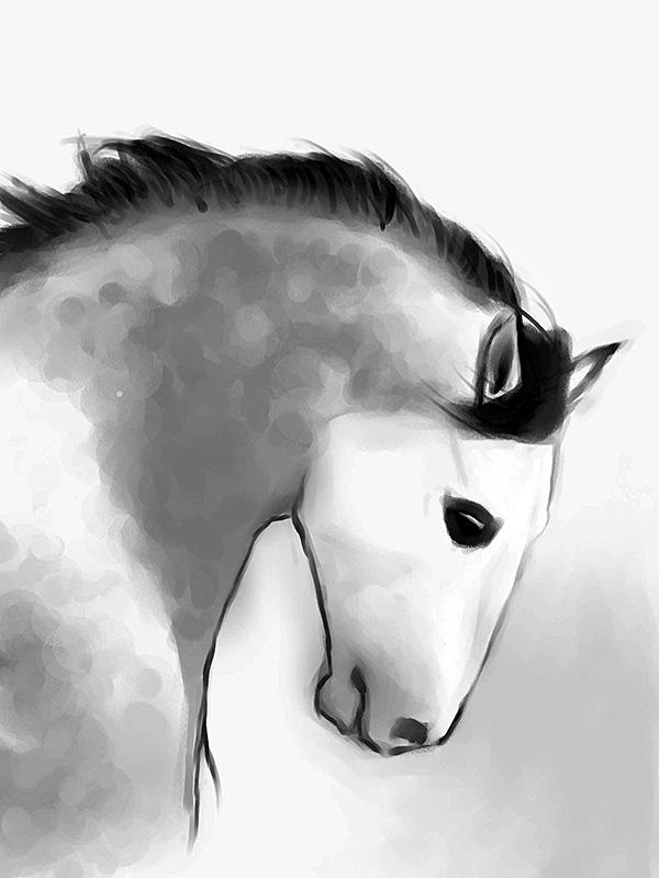 horse_2_sm